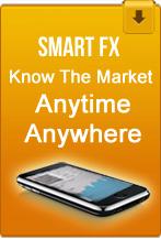 Forex capital services pvt ltd